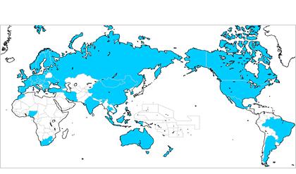 弊所における外国出願の取扱実績・・世界50ヵ国以上(マドプロ含む)